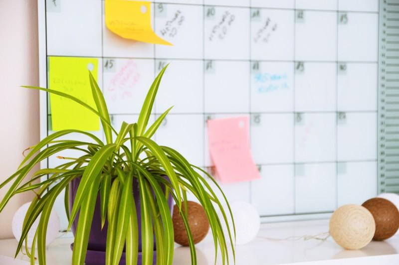 5 symptomów przemęczenia w pracy